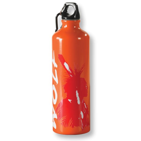 Stainless steel Flasche (Edelstahtrinkflasche)